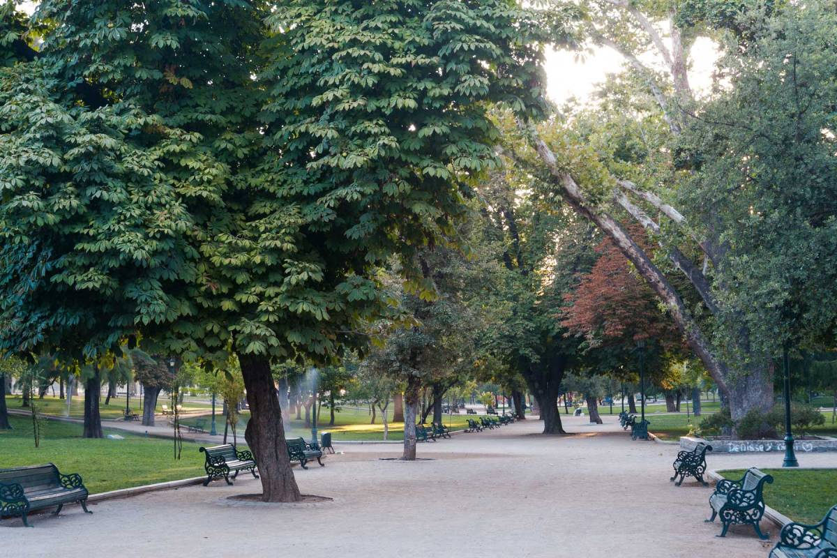 The Singular Santiago Park